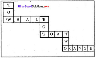 Bihar Board Class 6 English Book Solutions Chapter 9 Discrimination 1