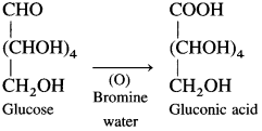 Maharashtra Board Class 12 Chemistry Solutions Chapter 14 Biomolecules 16