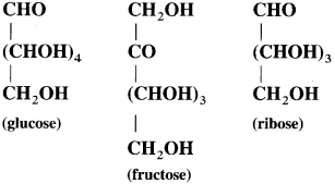 Maharashtra Board Class 12 Chemistry Solutions Chapter 14 Biomolecules 2