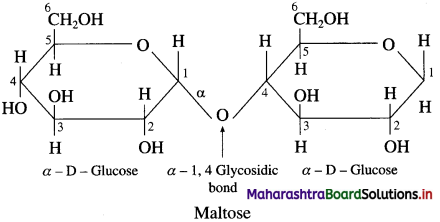 Maharashtra Board Class 12 Chemistry Solutions Chapter 14 Biomolecules 38