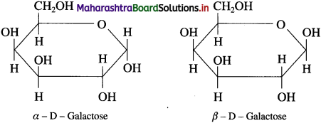 Maharashtra Board Class 12 Chemistry Solutions Chapter 14 Biomolecules 42