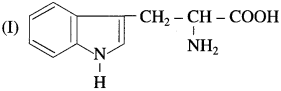 Maharashtra Board Class 12 Chemistry Solutions Chapter 14 Biomolecules 57