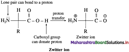Maharashtra Board Class 12 Chemistry Solutions Chapter 14 Biomolecules 61
