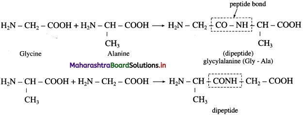 Maharashtra Board Class 12 Chemistry Solutions Chapter 14 Biomolecules 67