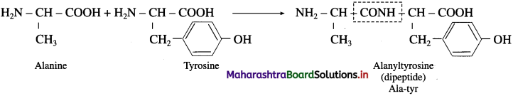 Maharashtra Board Class 12 Chemistry Solutions Chapter 14 Biomolecules 68