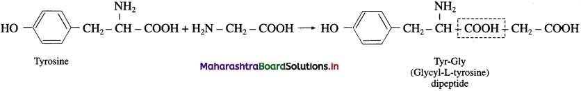 Maharashtra Board Class 12 Chemistry Solutions Chapter 14 Biomolecules 69